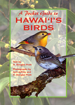 A Pocket Guide to Hawaii's Birds (bookcover)